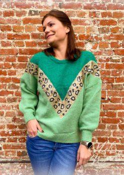 Trui met leopardprint in groen. De trui is 1 maat