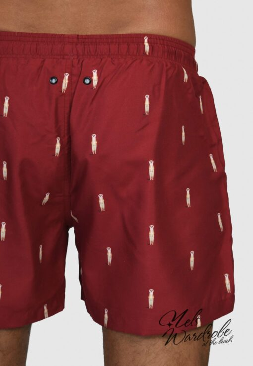 swimwear meerkat