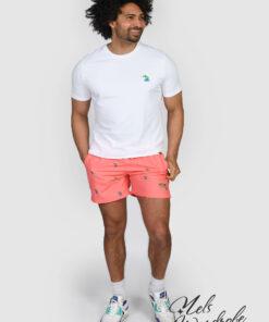 t-shirt bonsai